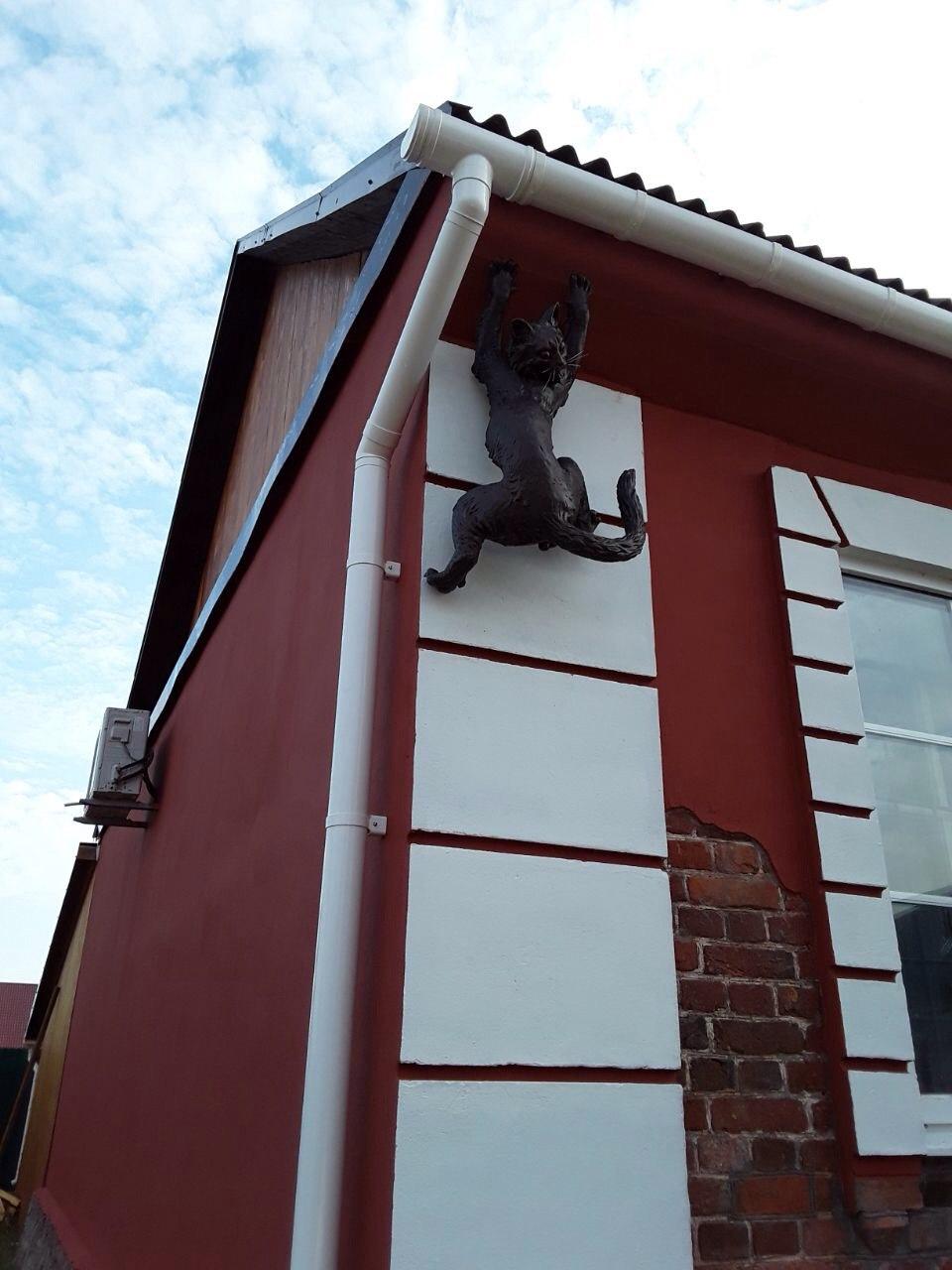 слепленный котик на фасаде